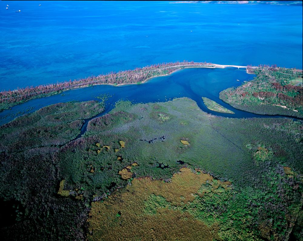 空中散歩「天空から眺める美ら島風景」  第42回