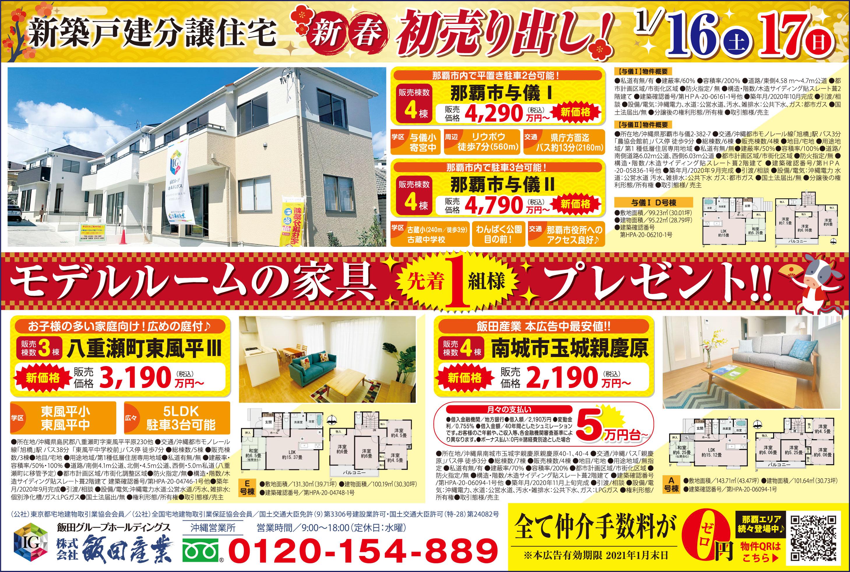 新築戸建分譲住宅新春初売り!